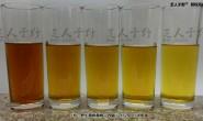 野生桑树桑黄煮水是什么颜色?